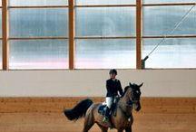 Indoor horse arenas