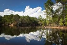 Enjoy Our Friendly Nature / Outdoor scenery and landscapes in Bastrop County, Texas. Enjoy our friendly nature!