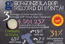About Gorgonzola Cheese / When the Web speaks of Gorgonzola Cheese
