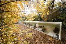 Autumn inspires us / Autumn colours inspire