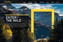 Webdesign    UX     UI / / We found a way to make things look great to the human eye through the window of a graphical web browser without worrying about what everything looked like under the hood.  - Mike Davidson