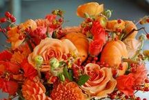 FALL DECOR / My Favorite Season!!!; Halloween, Harvest, Thanksgiving