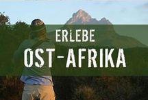 Vielfältiges Ostafrika: Tansania & Kenia / Erlebe den Triumpf, wenn du den Kilimandscharo bestiegen hast! Lass dich von der Schönheit der Sonnenuntergänge überwältigen! Entdecke wilde Tiere in den Weiten Kenias oder Tansanias! Und tauche ab an traumhaften Stränden!