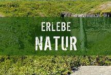 Natur in ihren schönsten Formen / Unsere Reisespezialisten waren auf der ganzen Welt unterwegs und haben euch die beeindruckendsten Landschaftsaufnahmen mitgebracht.