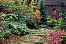 Ohm Cottage~ / PEACE, HARMONY, LOVE, JOY, ABUNDANCE, HEALTH, TRUTH, FREEDOM, UNITY, FLOW, SMILES, SMILES, SMILES / by Cynthia Cyn