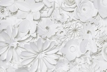 paper / by AK Cake Design