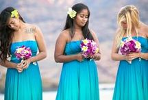 Wedding: Teal / wedding album