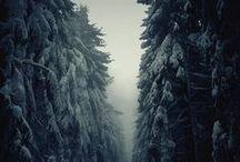 Photography: Landscapes