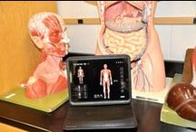Customer Testimonials  / Customers views and experiences with our 3D4Medical Apps