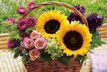 flowers in basket / by Grazyna Lilley