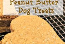 Homemade Dog Treats and more / Anything to do with womans best friend...photos, treat recipes, tips