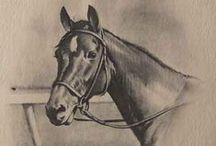 Cavalo - Desenho
