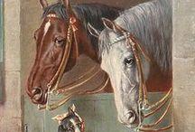 Cavalo - Vintage