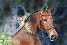 Cavalo - Esportes