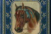 Cavalo - Capa de Livro e Filme