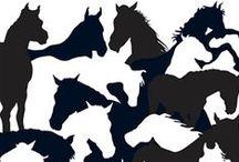 Cavalo - Ilustrações