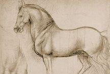 Cavalo - Leonardo da Vinci