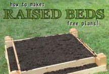Garden Inspiration / DIY Garden Ideas, Tips and Projects