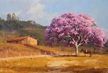 Cavalo - Paisagem Rural