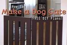 DIY Dog and Pet Projects