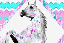 Cavalo - Estampas