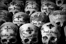 """skull and bone / """"Webster was much possessed by death/And saw the skull beneath the skin."""" T.S. Elliot"""