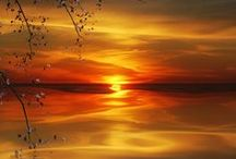 Awesome Sunset / by Frances Hebert