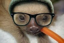 Just too cute!!