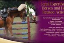 Horse Law Topics from Horse Expert Witness and Consultant / These are articles about legal issues that affect horse owners and horse business owners.
