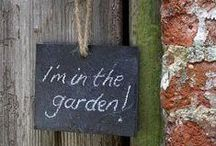 Terraza y jardín / Outdoor