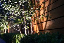 Garden lighting / Modern garden lighting can enhance any design or planting scheme and should be an essential part of the design. We mainly use LED technology for ease of use, low power consumption & low running costs. Unlike halogen lighting, LED does not get hot so is the obvious choice for safety as well as style!