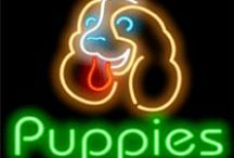 P U P P I E S !!!! / I love puppies!! I hate animal abuse.if you are an animal abuser get the hell off of my boards ,you are not welcome here!!! / by jeannie shephard