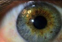 Experimento I : Ojos