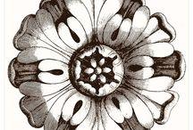 Ornemaman / Ornement::: motif//frise//moulure//feuille d'acanthe