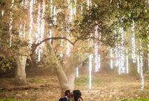 Wedding / by Lori Sides