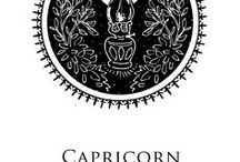 astrology. / i'm a Capricorn, no more needs to be said...