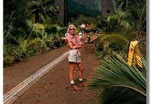 [Jurassic Park] / Clever girl...