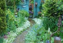 jardin*quatre saisons / by Mihoko Kaneko