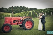Weddings / New Zealand has so much to offer those who are planning a wedding.  Our backdrops guarantee amazing photos, our food and wine are beyond memorable, and New Zealanders offer a friendly and personalised experience. / by Anchorage Motel Apartments, Te Anau, NZ