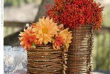 otoño,decoracion / by P. de eusebio
