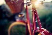 bike lust / by maritza soto