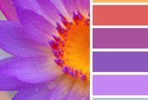 Art: Color Palettes & Color Schemes / by Tina Nelson