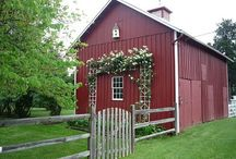 Fixing a Barn / Plenty of room to work on our barn. Recycle and reuse as much as we can. / by Susan Douglas