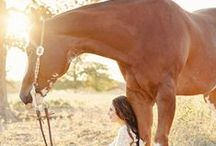Horses and Girls / Portraits for the lover of horses