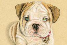Art: Colored Pencils / Everything about colored pencils and illustrations made with colored pencils! / by Tina Nelson