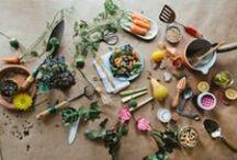 Ooooo Food Photography / B E A U T I F U L Food! / by Kelsey Swanson