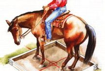 Horses- and rider training / by Lori Olean