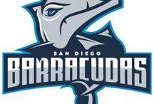 San Diego Barracudas / This board is dedicated to my fictional NHL hockey team. Go Barracudas!