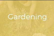 Gardening / All things gardening...many of which are aspirational as I live in zone 5a - aka. cold a lot of the year