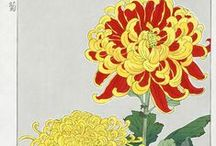 prints... japanese flowers / japanese flowers / by aly english, designer